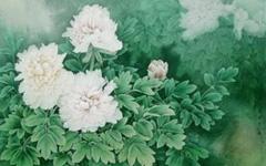 神奇牡丹花