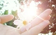 你的亲切就像一缕阳光