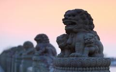 卢沟桥的狮子
