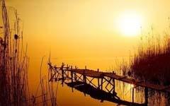http://www.zjzhongshang.com/uploads/allimg/190314/1_0314141424KZ.jpg