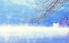 http://www.zjzhongshang.com/uploads/allimg/190314/1_03141414524I5.jpg