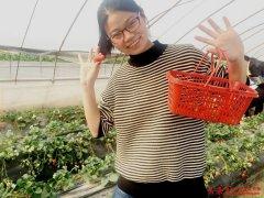 http://www.zjzhongshang.com/uploads/allimg/190317/1_031H2361VK3.jpg